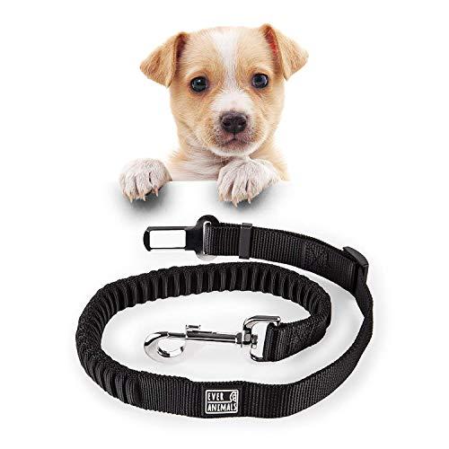 EVERANIMALS Hundegurt fürs Auto - Flexibler Anschnallgurt, Hundeanschnaller fürs Auto, Sicherheitsgeschirr