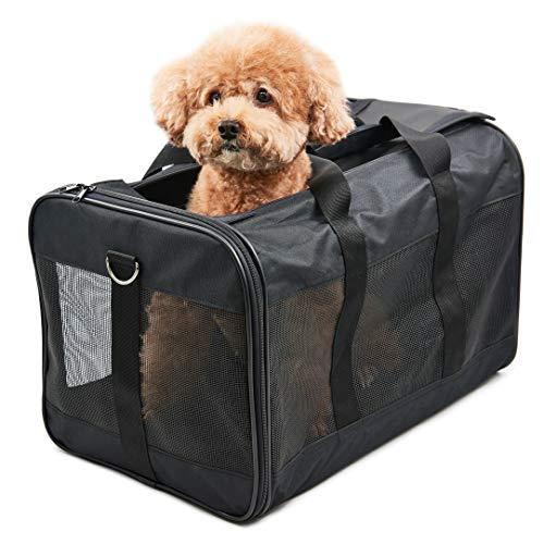 Hitchy Transportbox Hund Hundebox für Katzen, Kleine Hunde, Kätzchen oder Welpen, Airline zugelassen, Reisefreundliche (L)