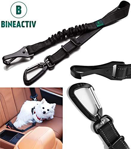 BINEACTIV Hunde-Sicherheitsgurt für das Auto, Isofix Befestigung, drehbarer Aluminium-Karabiner, Ruckdämpfung, längenverstellbar (schwarz) (1 Stück)